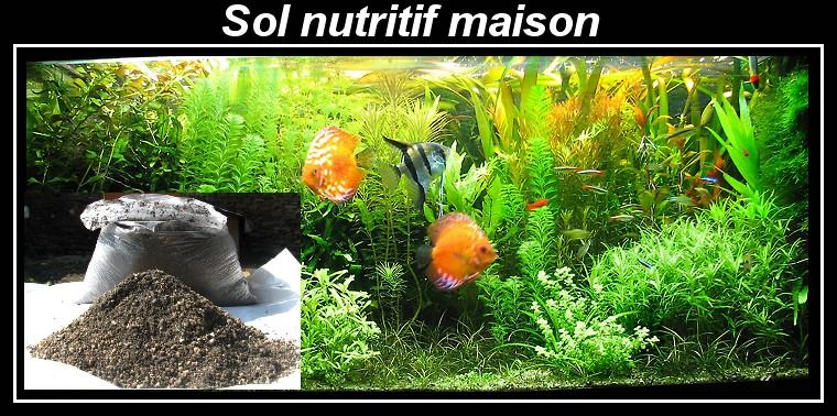 fertilisation engrais sol nutritif crevettes aquarium 42. Black Bedroom Furniture Sets. Home Design Ideas