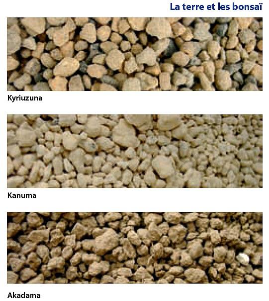 Akadama un substrat pour bonsa et aquarium crevettes for Substrat pour aquarium